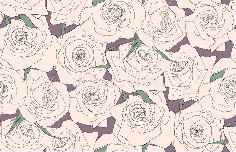 Seamless pattern of roses. Buds of roses stock illustration