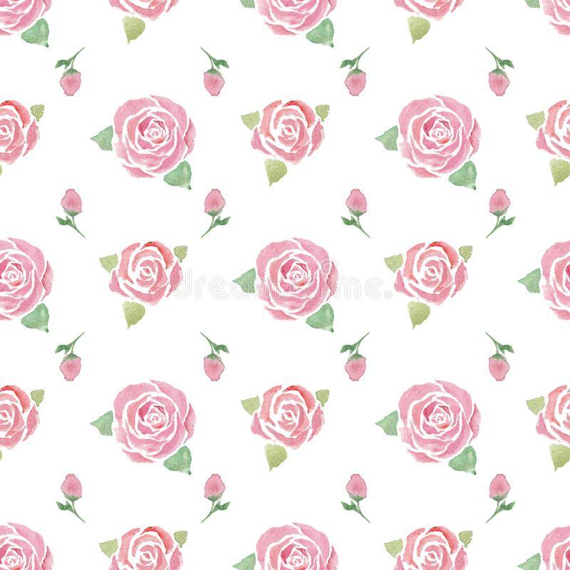 Seamless pattern with  roses royalty free illustration
