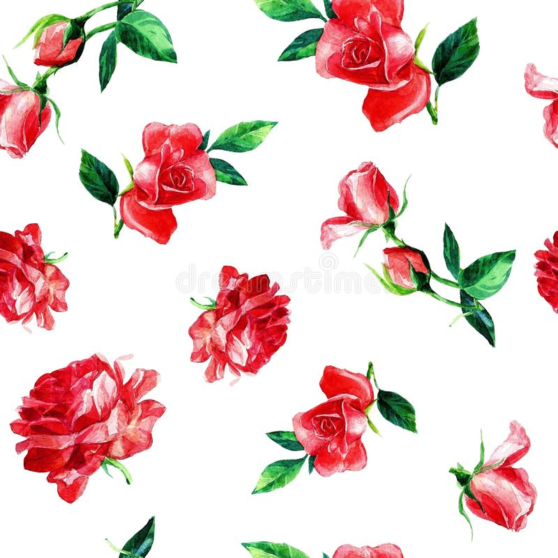 Seamless pattern of roses in watercolor. royalty free stock photo