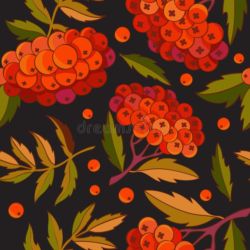 Seamless pattern rowan branch, leaves and red berries on black background in vector. Autumn design. Red forest berries. For design stock illustration