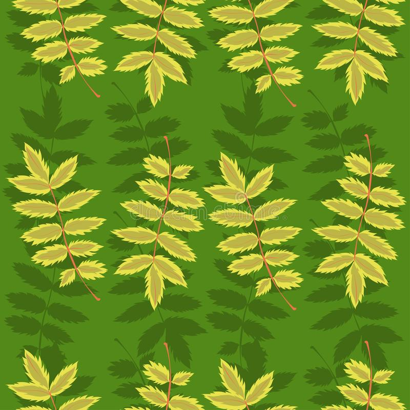 Seamless pattern with rowan leaves. Vector graphics. Seamless pattern with rowan leaves. Vector image stock images