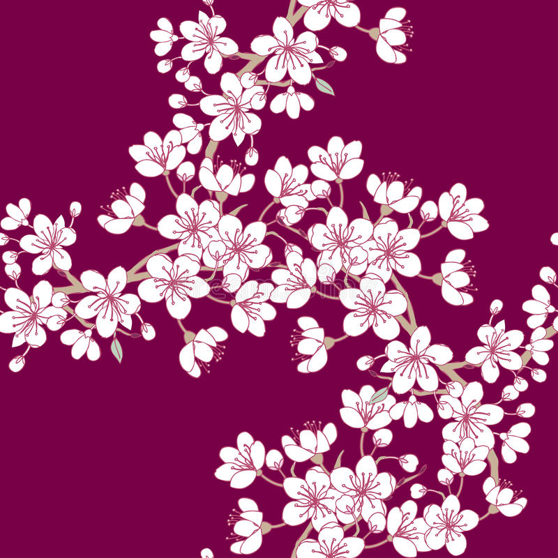 Seamless Pattern Sakura royalty free illustration