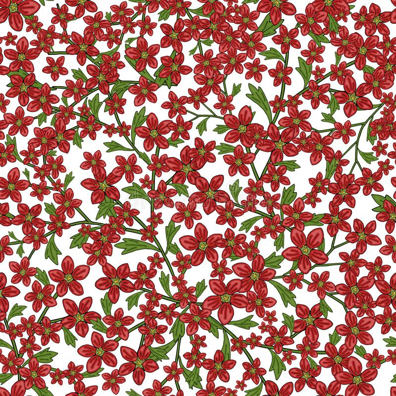 Vector seamless retro pattern, flowers saxifrage. Fills, wallpaper, surface textures. royalty free illustration