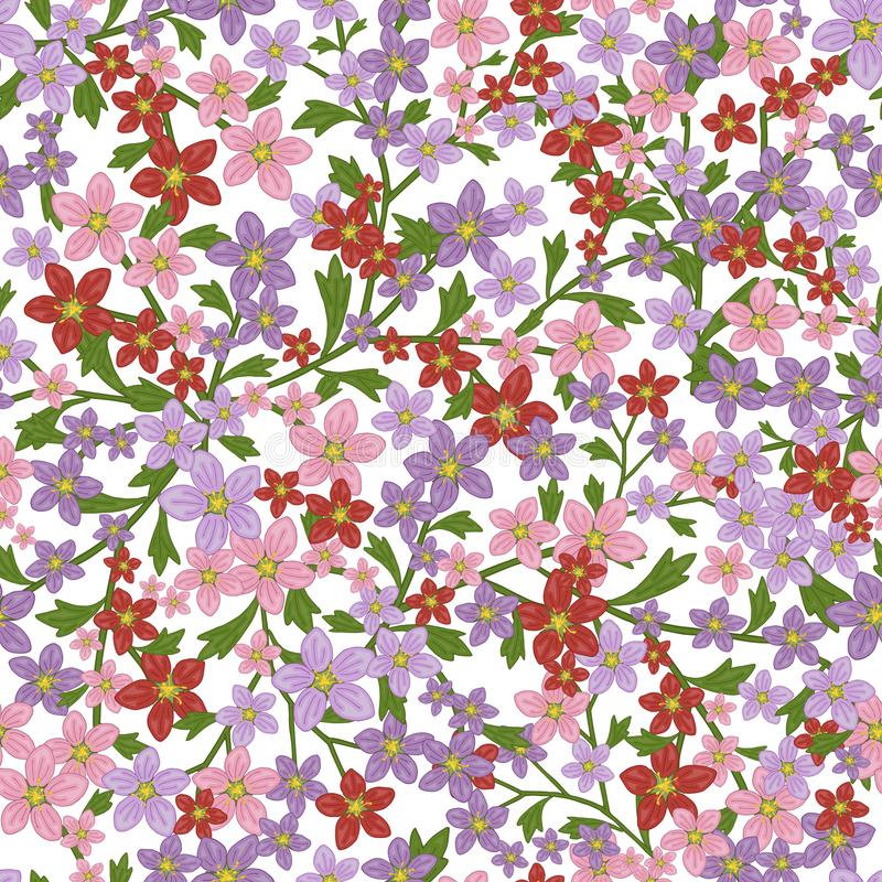 Vector seamless retro pattern, flowers saxifrage. Fills, wallpaper, surface textures. vector illustration