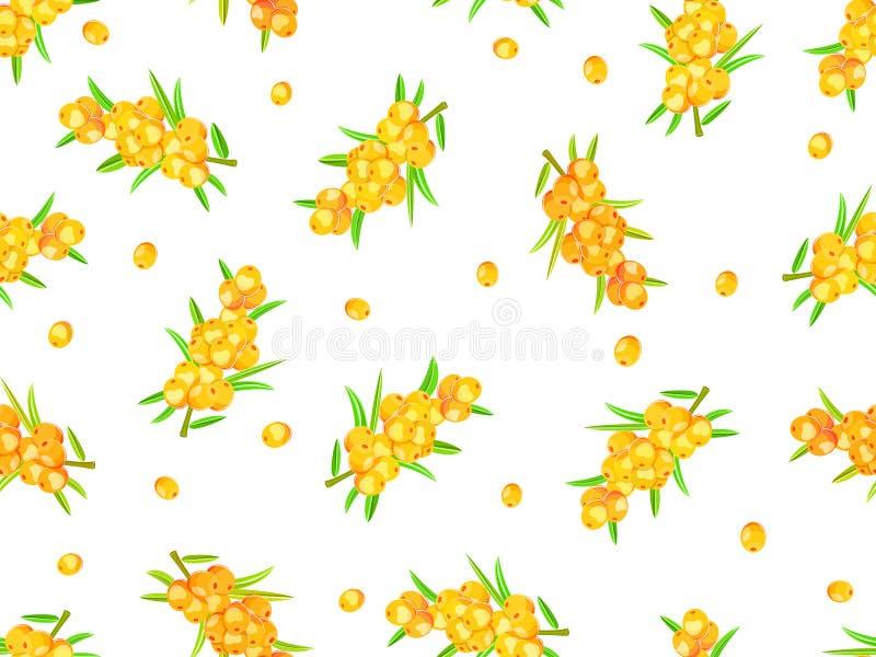 Seamless Pattern Sea-buckthorn Berries Stock Image