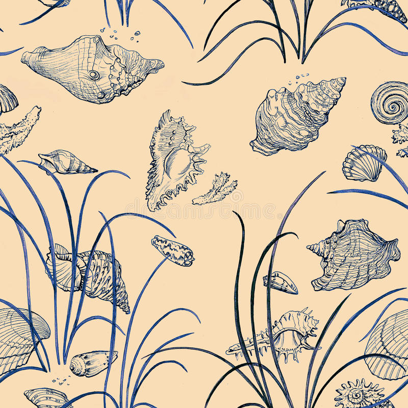 Seamless pattern with sea shell and grass. stock photos