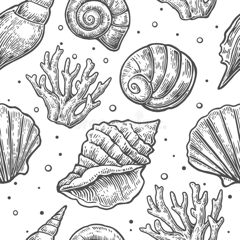 Seamless pattern sea shell. Vector engraving vintage illustrations. Isolated on white background vector illustration