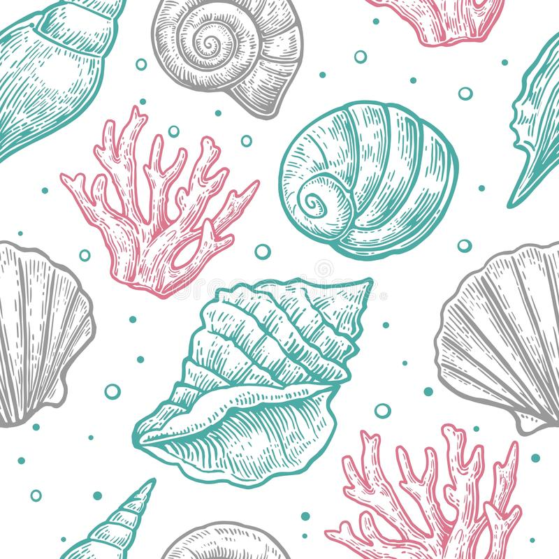 Seamless pattern sea shell. Vector engraving vintage illustrations. Isolated on white background.  vector illustration