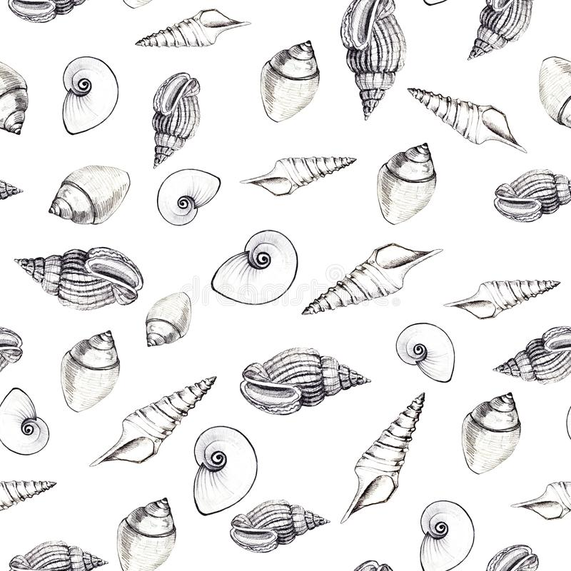 Seamless pattern of sea shells on white background. Manual graphics. Design for backgrounds, wallpapers and packaging stock photography