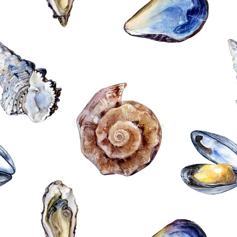 Watercolor hand drawn shell, oyster isolated seamless pattern. royalty free illustration
