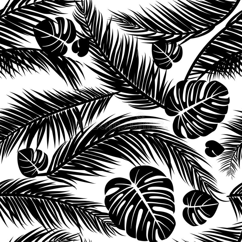 Seamless pattern with silhouettes of palm tree leaves in black on white background royalty free illustration