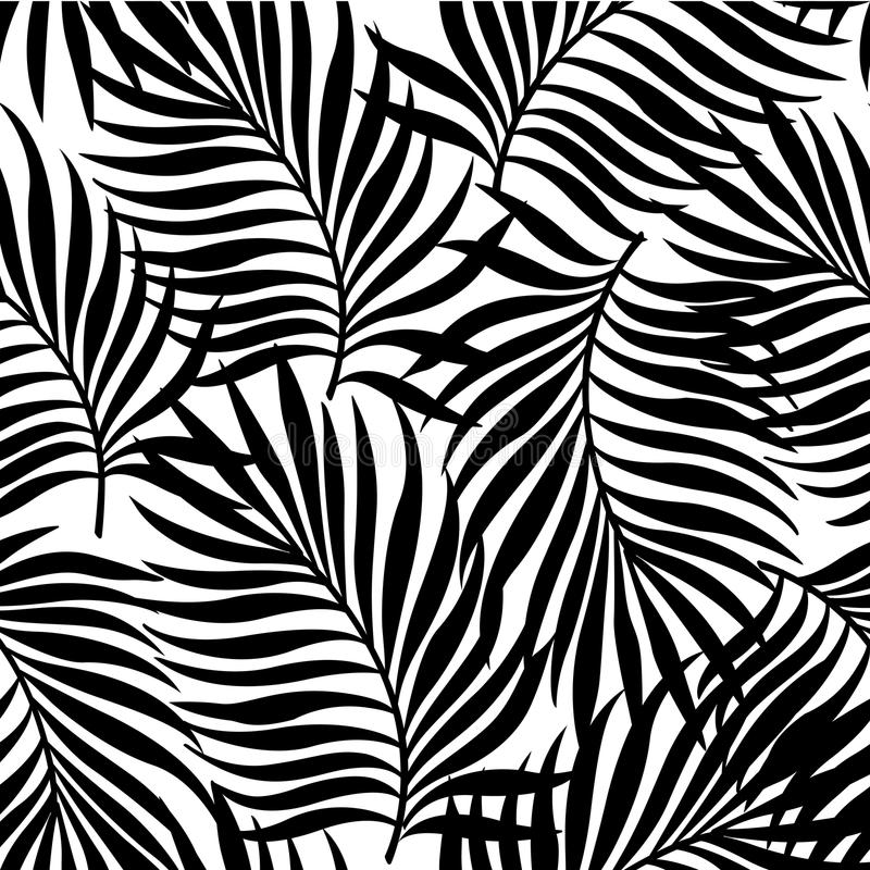 Seamless pattern with silhouettes of palm tree leaves in black on white background. royalty free illustration