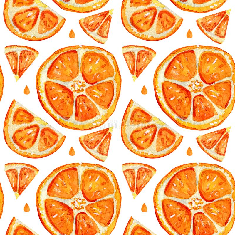 Seamless pattern with slices of orange. Summer citrus exotic fruits. Bright background. Sliced orange isolated on white background. Hand drawn watercolor stock illustration