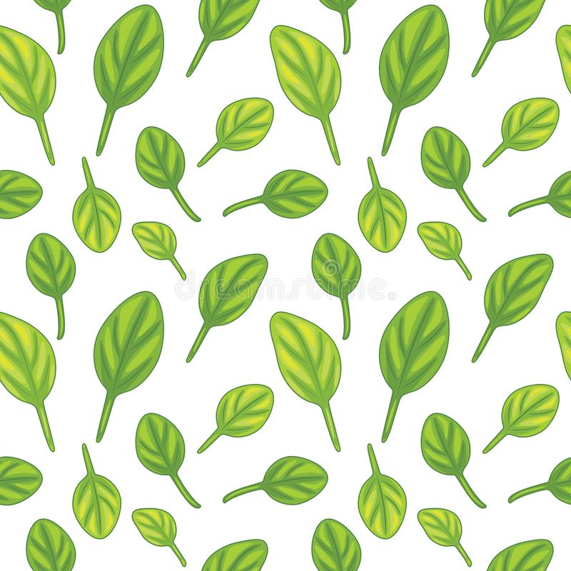 Seamless pattern with spinach leaves stock image