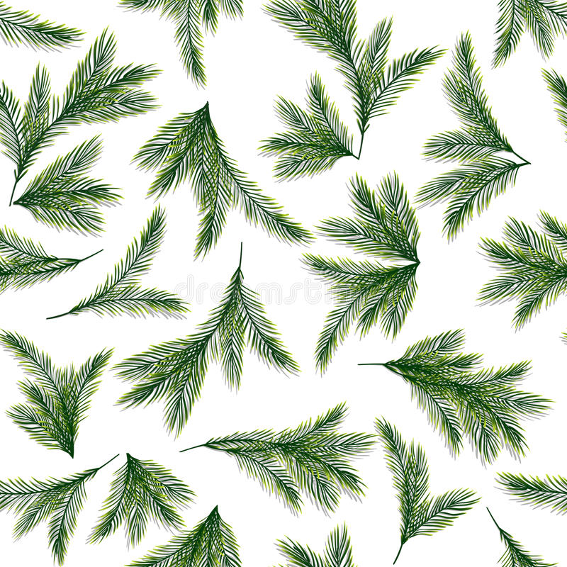 Seamless pattern with spruce or pine branches royalty free illustration