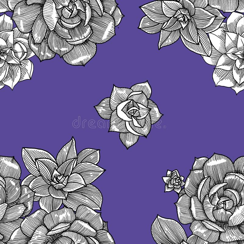 Seamless pattern with succulent. Graphics. Hand drawn royalty free illustration