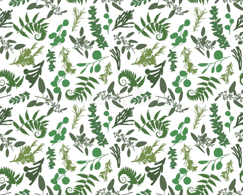 Seamless pattern, texture print with light watercolor hand drawn green eucalyptus ,forest fern, branches boxwood, brunia, buxus. Tender, elegant textile fabric stock illustration