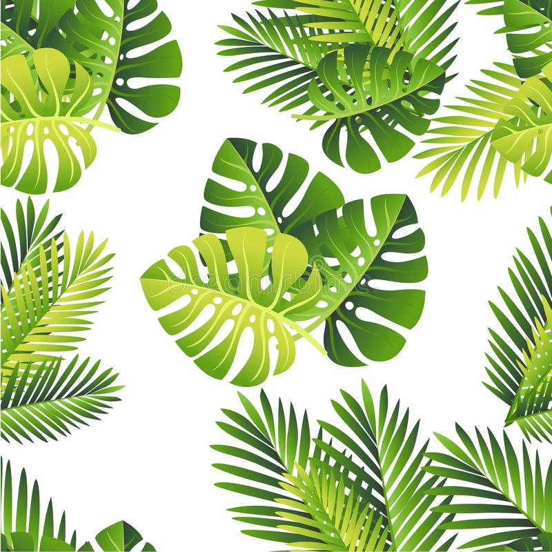 Seamless pattern. Tropical green leaves. Exotical jungle and palm leaf. Vector floral element on white background.  stock illustration