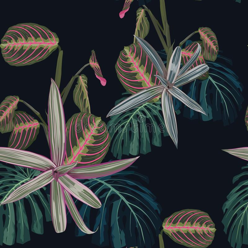 Seamless pattern with tropical leaves and exotic plants. Dark and bright palm leaves on the black background. Vector seamless pattern. Tropical illustration royalty free illustration