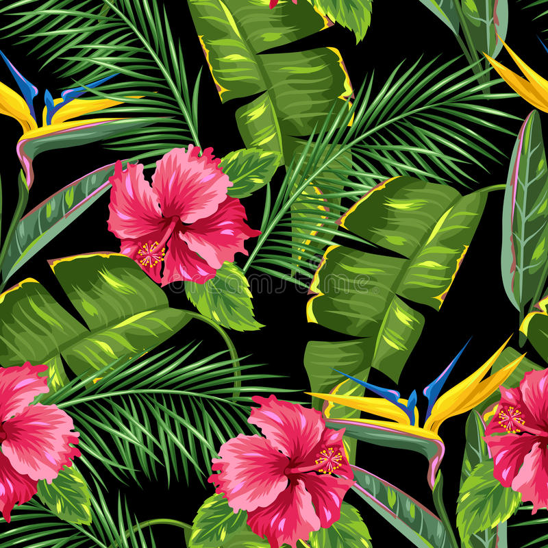 Seamless pattern with tropical leaves and flowers. Palms branches, bird of paradise flower, hibiscus stock illustration