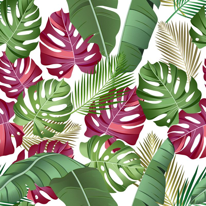 Seamless pattern with tropical leaves: palms, monstera, banana leaves, jungle leaf seamless vector pattern white background. royalty free illustration