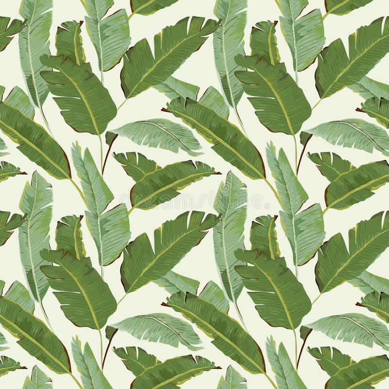 Seamless Pattern. Tropical Palm Leaves Background. Banana Leaves royalty free illustration