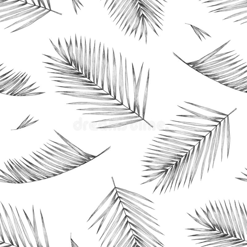 Seamless pattern with tropical palm leaves on white background. Design for textiles and fabrics. Hand pencil drawing royalty free illustration