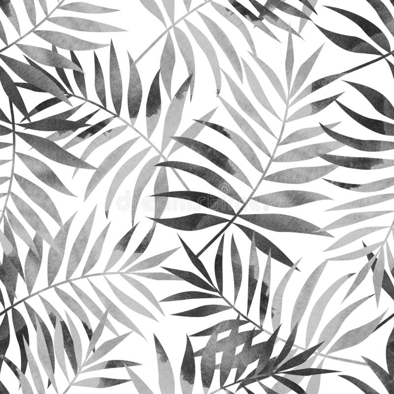 Seamless pattern with tropical palm leaves on white background. Stylish illustration vector illustration