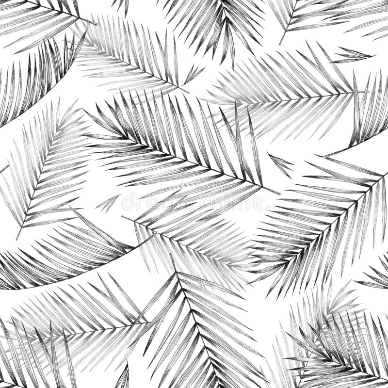 Seamless pattern with tropical palm leave on white background. D vector illustration