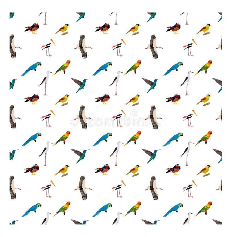 Seamless pattern with various kinds of birds on white background stock illustration