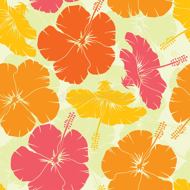Seamless pattern, vector. Hibiscus seamless pattern, vector illustration