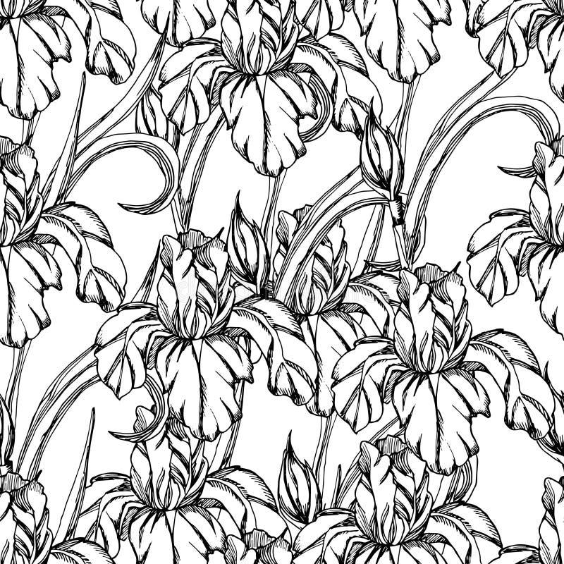 Seamless patternctor decorative of iris flowers stock vector download seamless patternctor decorative of iris flowers stock vector image 71280591 pronofoot35fo Choice Image