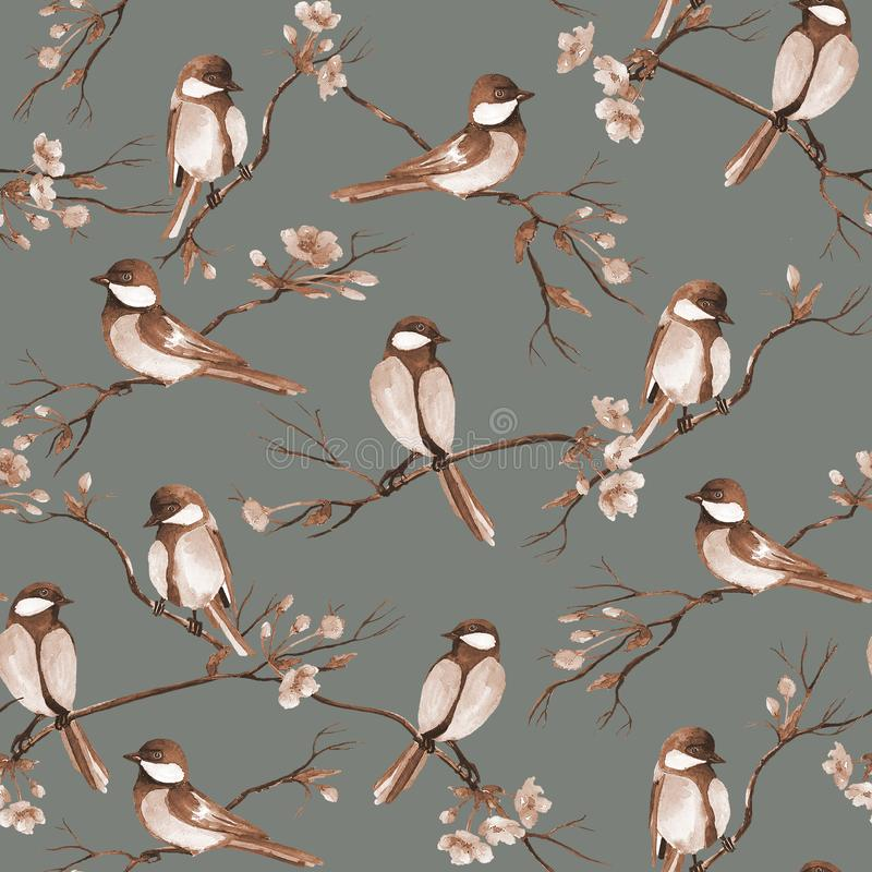 Seamless pattern with watercolor birds sitting on a branches with flowers royalty free stock image