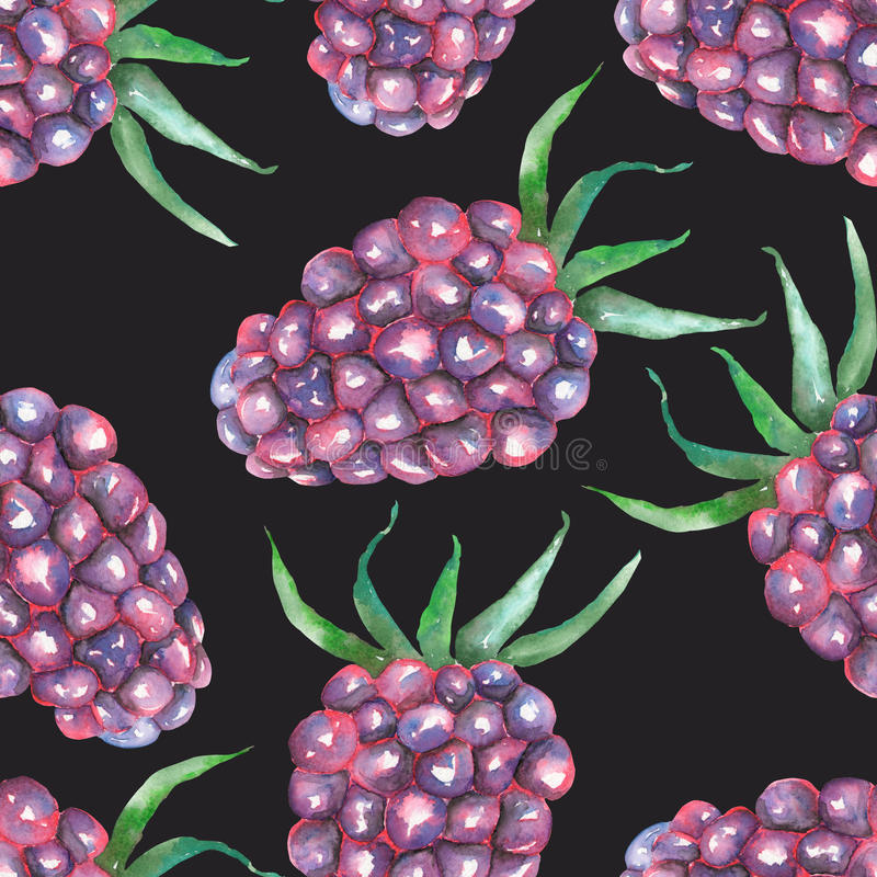 A seamless pattern with the watercolor blackberry. A seamless pattern with the blackberry, hand-drawn in a watercolor on a dark background vector illustration