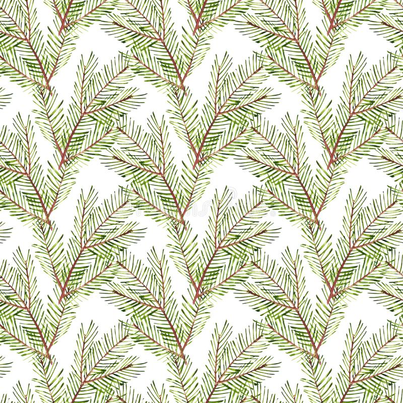 Seamless pattern. Watercolor Christmas tree branches. Hand painted texture with fir-needle natural elements isolated on stock illustration