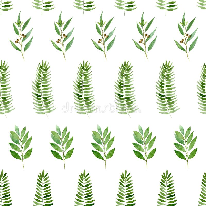 Seamless pattern of watercolor eucalyptus, fern and bay on white background vector illustration