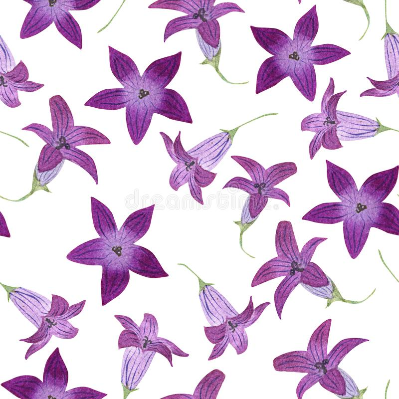Seamless pattern with watercolor garden bluebells on white background. Good design for textile, wallpaper, backdrop royalty free illustration
