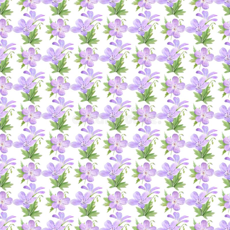 Seamless pattern of watercolor geranium flowers. Perfect for web design, cosmetics design, package, textile, wedding invitation,. Logo Geranium sylvaticum L royalty free illustration