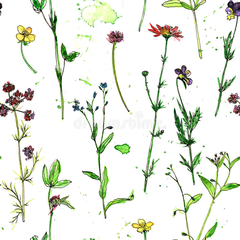 Seamless pattern with watercolor and ink drawing plants vector illustration