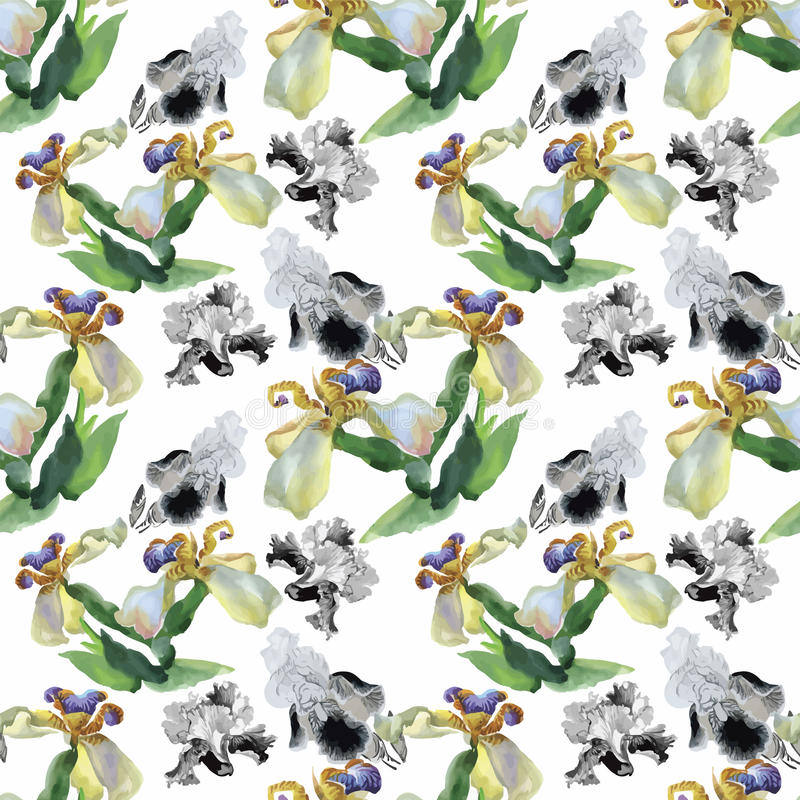 Seamless pattern with watercolor irises. Vector illustration stock illustration