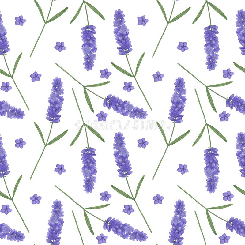 Seamless pattern with watercolor lavender. Illustration of Provence leaf sprigs Floral textures handmade leaves Digital paper Text royalty free illustration