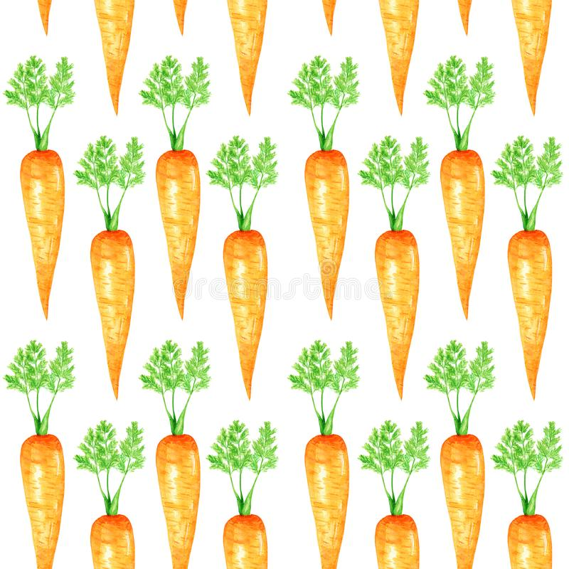 Seamless pattern Watercolor painted collection of orange carrot. Cartoon style Hand drawn fresh vegan food on white royalty free illustration