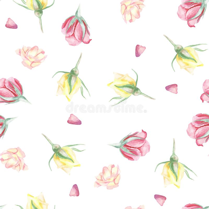 Seamless pattern of watercolor roses  or design royalty free illustration