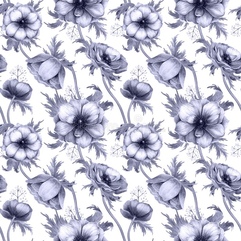 Seamless pattern with watercolor white anemone flowers. Spring floral design for wedding invitation royalty free stock photography