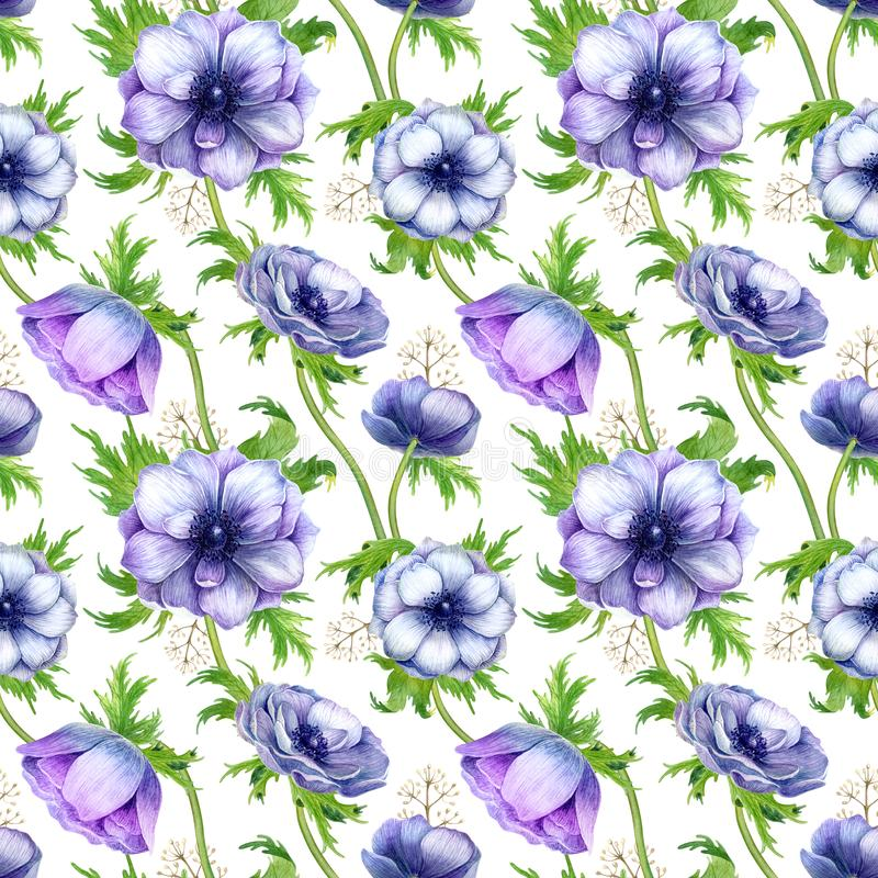 Seamless pattern with watercolor white purple anemone flowers. Spring floral design for wedding invitation royalty free stock photo