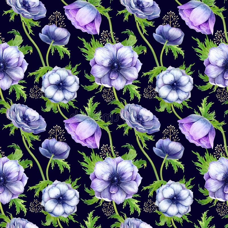 Seamless pattern with watercolor white purple anemone flowers. Spring floral design for wedding invitation royalty free stock image