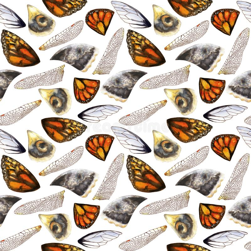 Seamless pattern of watercolor wings of butterflies and moths stock images