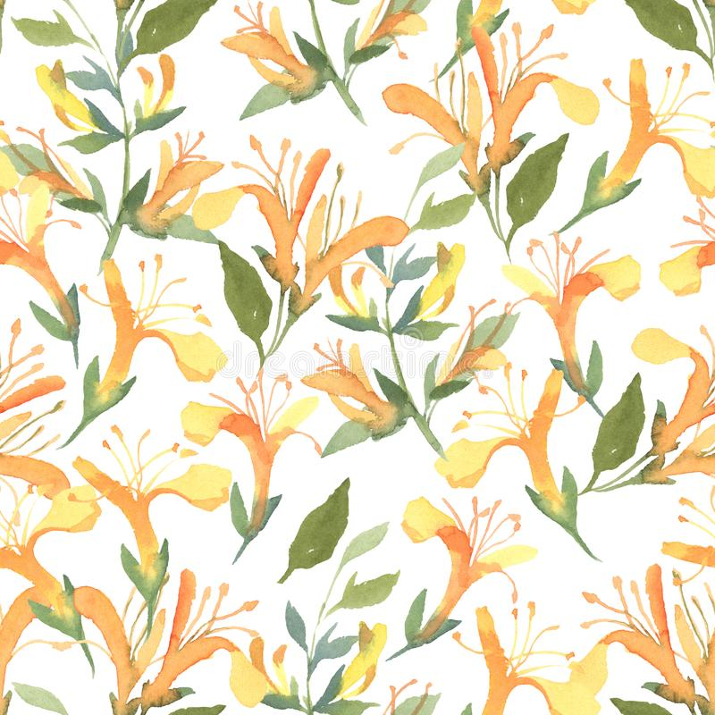 Seamless pattern of watercolor yellow Lonicera flowers on white stock illustration