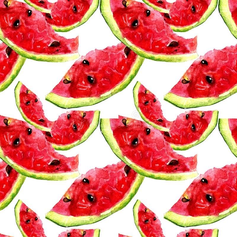 Seamless pattern with watermelon royalty free illustration