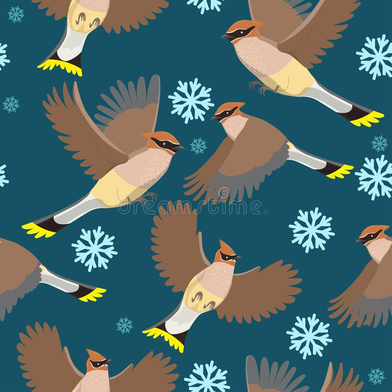 Seamless pattern with waxwings and with snowflakes. Vector graphics stock illustration
